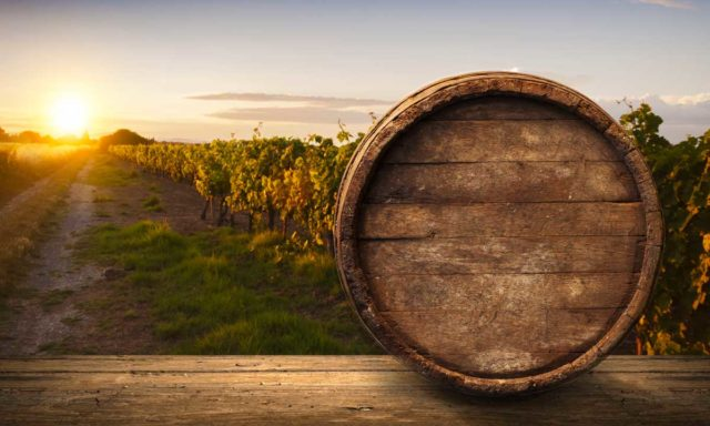 Vino Biodinamico