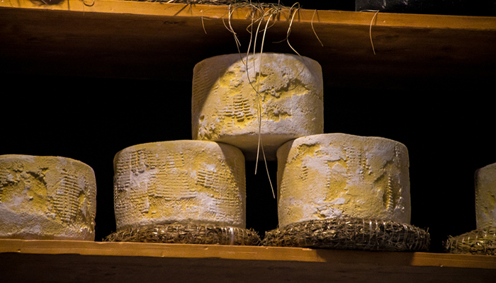 formaggio più antico del mondo food lifestyle 1