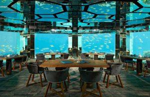 ristorante-subacuqeo-portofino