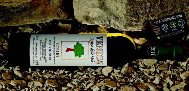 food lifestyle azienda vinicola venica