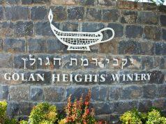vini-israeliani-foodlifestyle