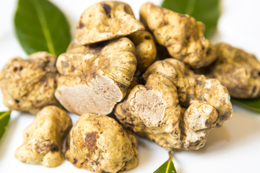 tartufo-foodlifestyle