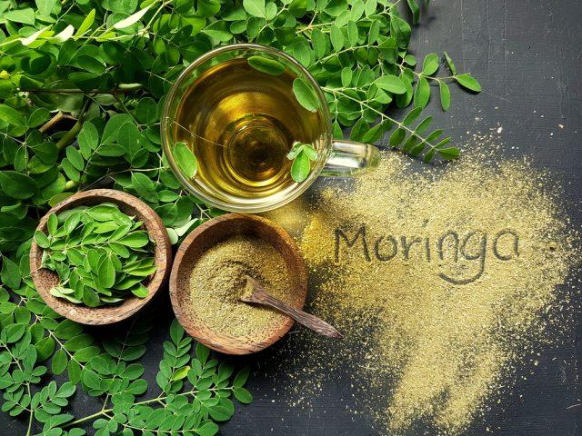 moringa-oleifera-food-lifestyle